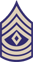 First Sergeant (1st. SG)